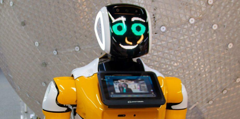 Робот в Лабытнангах